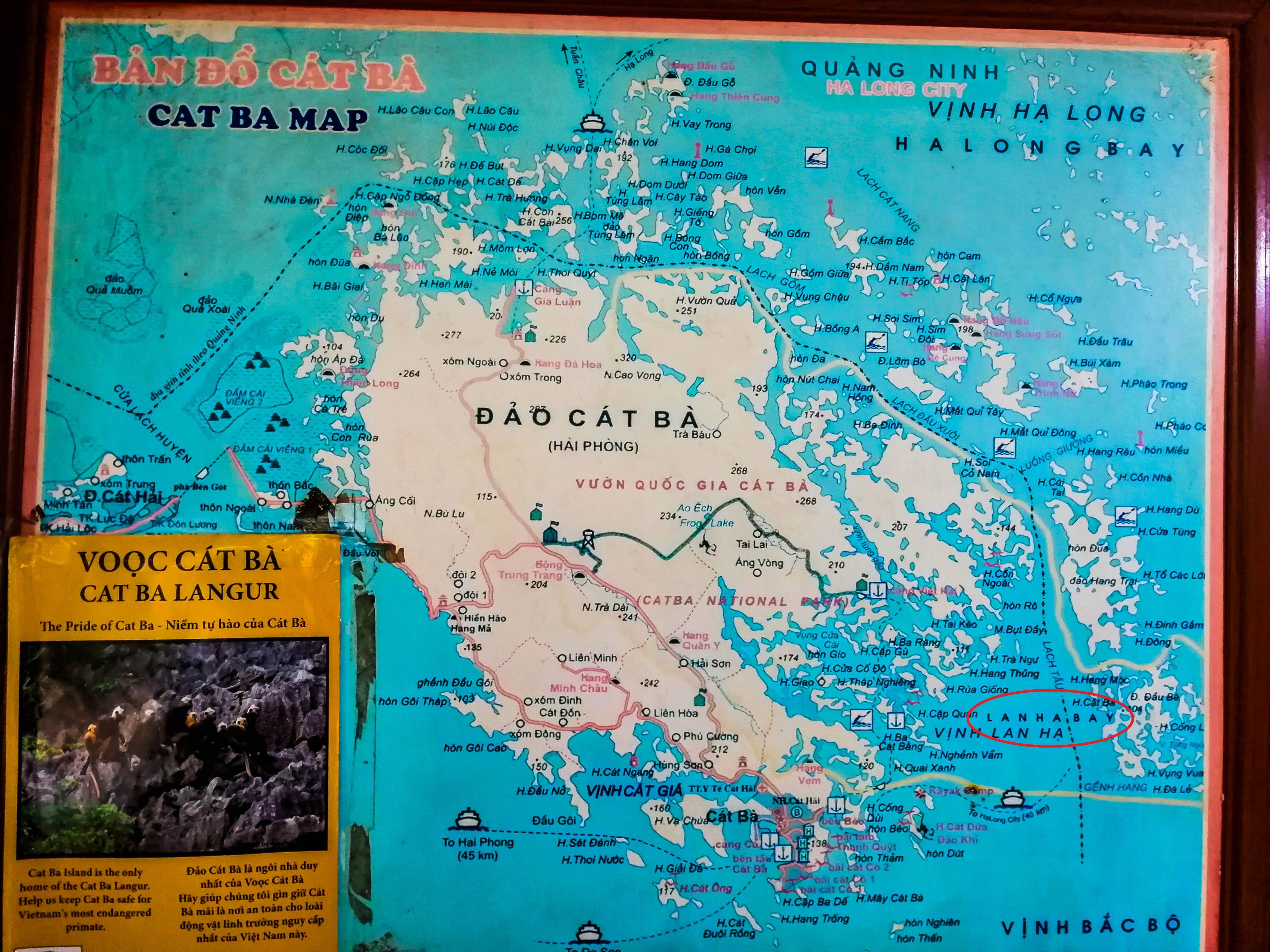 Karte Cat Ba